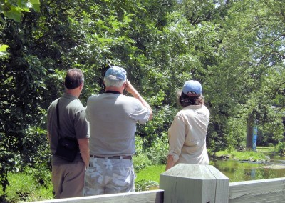 Birdwatchers on the Greenway
